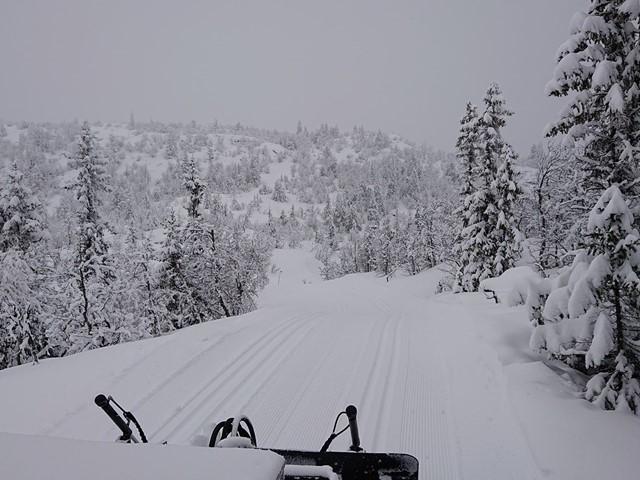 Det har de siste døgn kommet noe snø...