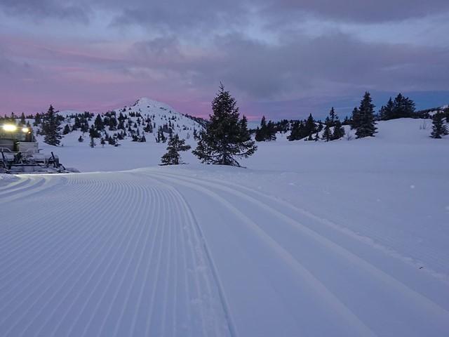Vinterferie uke 7 - TIRSDAG