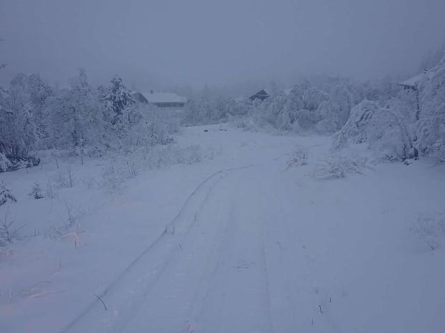 Det varsles snø frem mot helgen, vi planlegger å sette spor før lørdag…