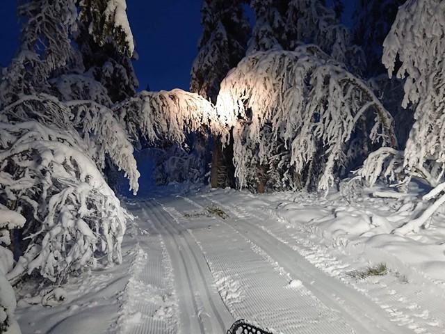 Det er i dag torsdag satt spor i deler av løypenettet, og du kan nå ta din første skitur...