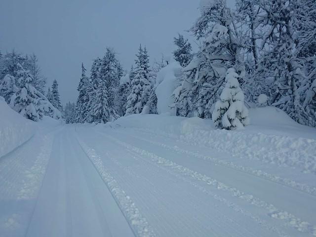 Det snør, det snør, og det skal fortsette å snø