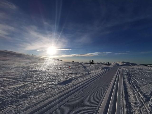 Løypekjøring vinterferien UKE 9 - oppdatert løyperapport onsdag morgen